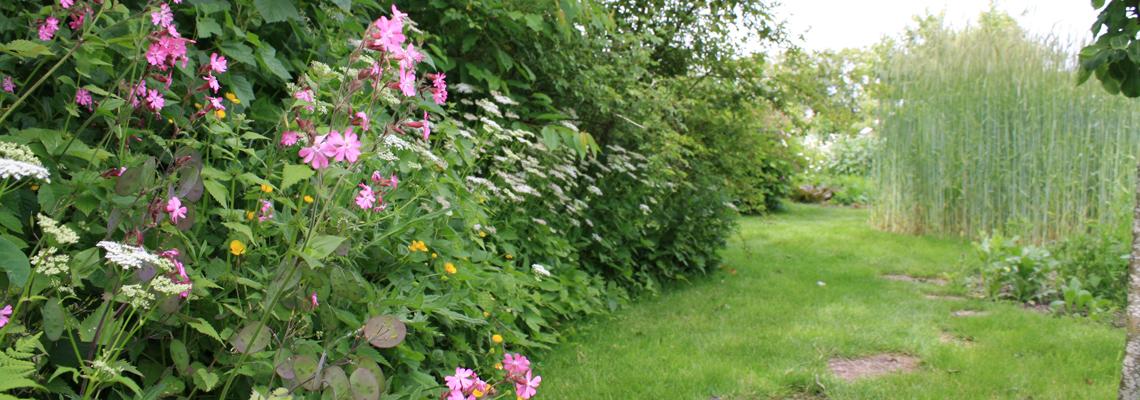 KeesDekker-tuin